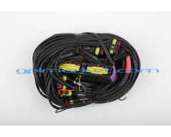 5-6-8 CYLINDERS LOVATO WIRING OBD-II